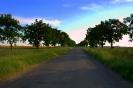 Trasa 3_8