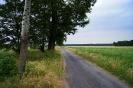 Trasa 4 - Wschowa - Osowa Sień - Wincentowo - Niechłód - Jezierzyce Kościelne - Wschowa